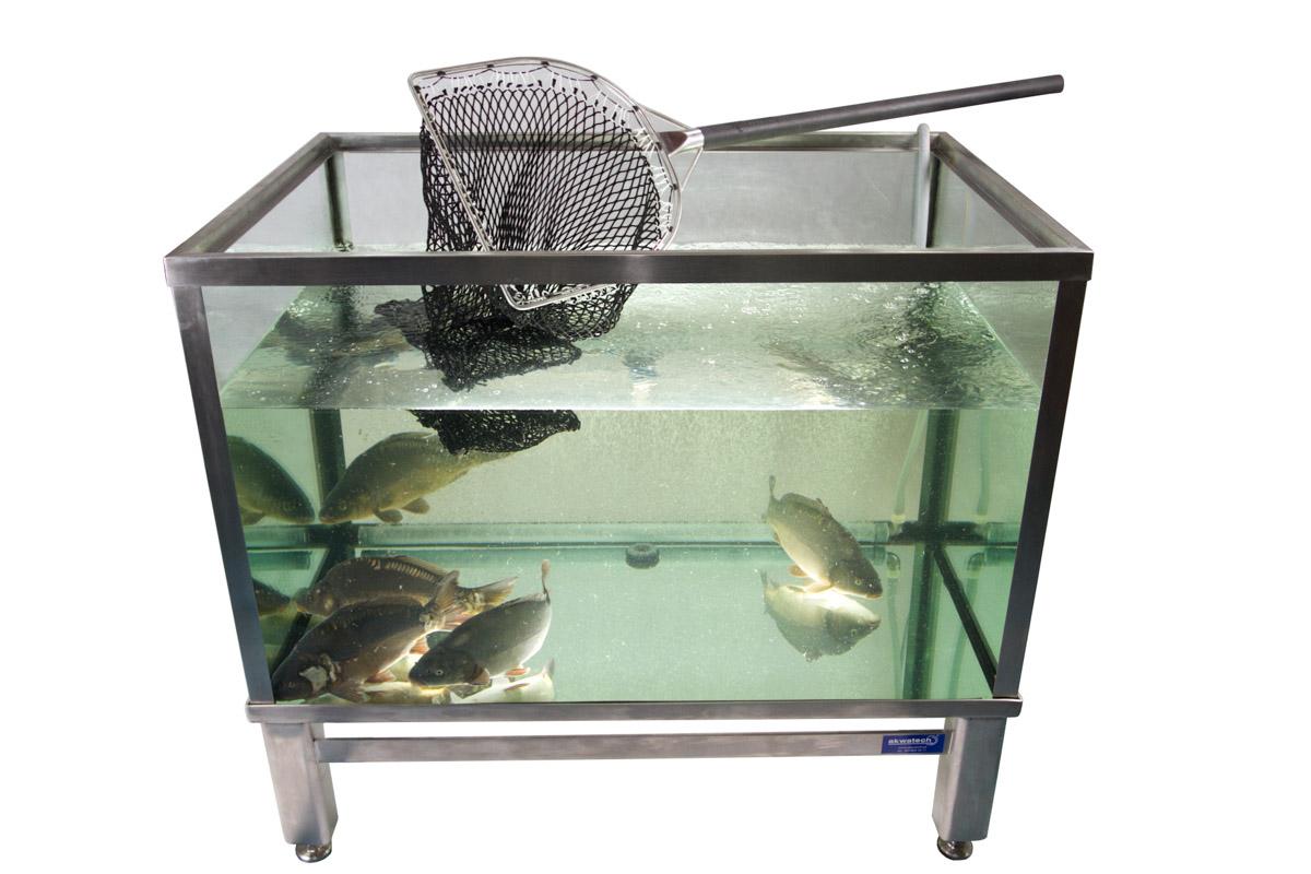szklany zbiornik do sprzedaży ryb