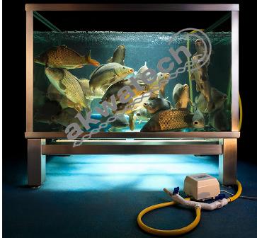 Zbiornik do sprzedaży ryb ZR650
