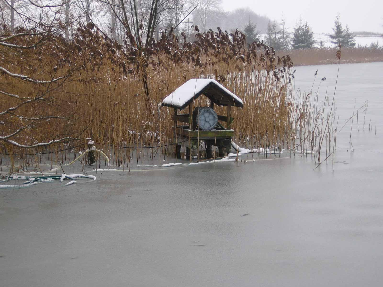 napowietrzanie wody w stawie